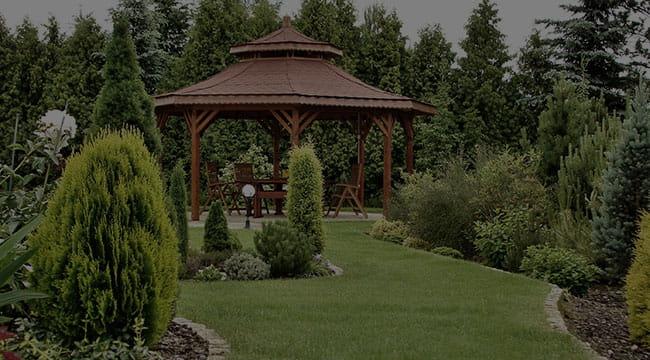 Muscoy Garden Design