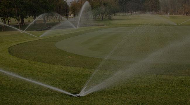 Muscoy Irrigation